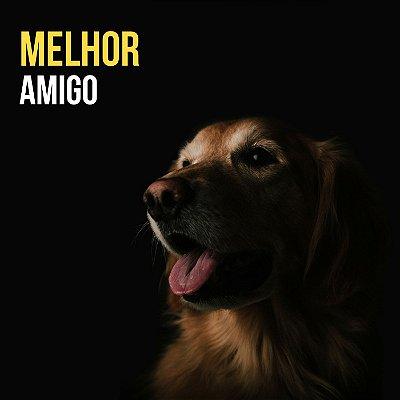 Quadro Decorativo Poster Cachorro Frase
