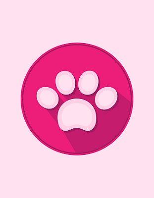 Quadro Decorativo Poster Pata Pink