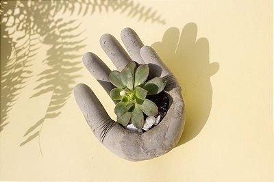 Mão de cimento