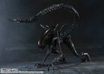 Alien Warrior - Alien Versus Predator - S.H. Monster Arts