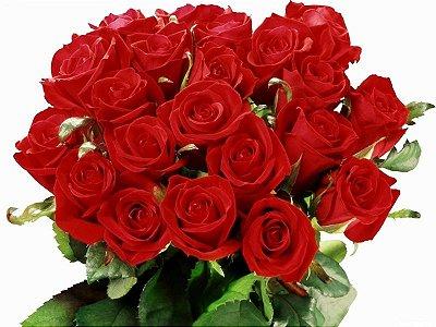 Buquê com 12 Flores Vermelhas