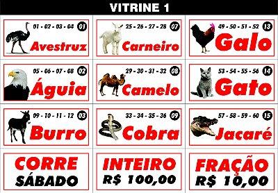 CRACHÁ DOS BICHOS - VITRINE 1 (foto)