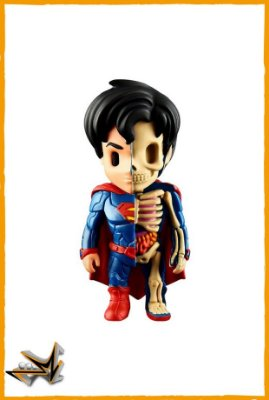 Superman Dc Comics - Xray