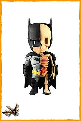 Batman Dc Comics - Xray
