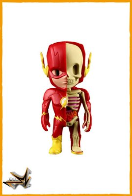Flash Dc Comics - Xray