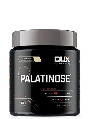 Palatinose 400g Dux