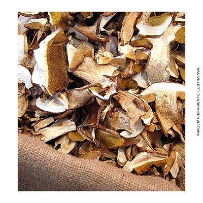 Cogumelo Funghi Seco