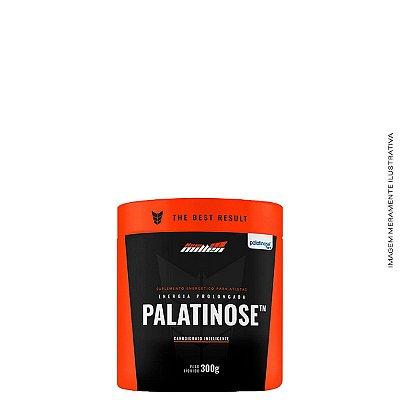 Palatinose 300g - New Millen