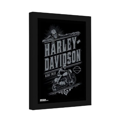 Quadro Decorativo Harley Davidson Ride Free