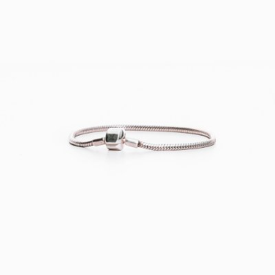 Bracelete Essence Prata de lei 925 - Allfenas