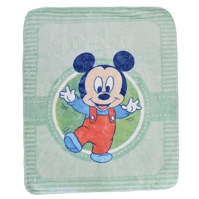 Cobertor Infantil Alegria Disney Raschel - Jolitex