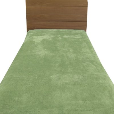Cobertor Microfibra Solteiro - Verde Claro - Parahyba