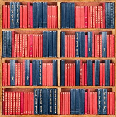 Papel de parede biblioteca fp532