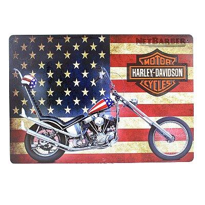 Quadro Harley Davidson 02