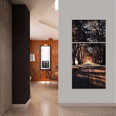 Quadro decorativo Vertical Corredor de Árvores Estrada