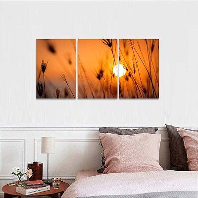 Quadros Plantas Natureza Sunset decorativo