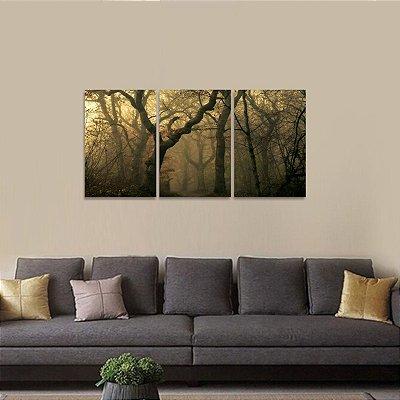 Conjunto 3 Peças Floresta Natureza Névoa Mistica