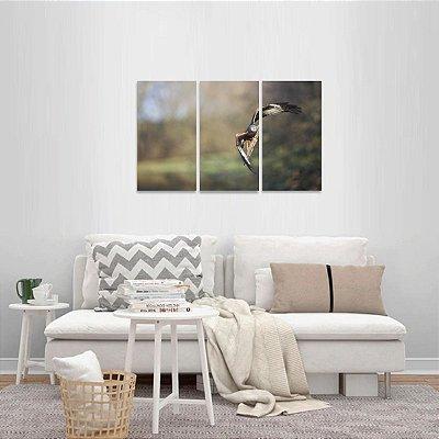 Quadro decorativo Águia Voando Arte 3 Peças