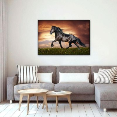 Quadro Cavalo Preto no Campo Sunset decorativo
