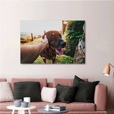 Quadro O Melhor Amigo do Homem decorativo Cachorros