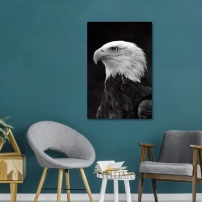 Quadro Intense Eagle Águia Artístico decorativo
