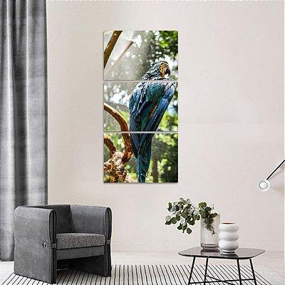 Quadro Arara na Natureza Artístico Aves Conjunto Vertical 3 Peças