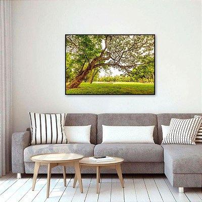 Quadro Árvore da Vida Natureza Amanhecer Luz do Dia