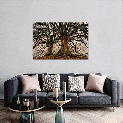 Quadro As Raízes das Árvores Natureza decorativo