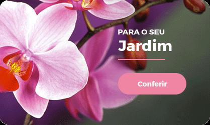 mini1_jardim