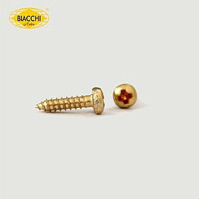 Biacchi - Parafuso Cabeça Panela - 10 x 2,20mm - Aço Zinco Amarelo