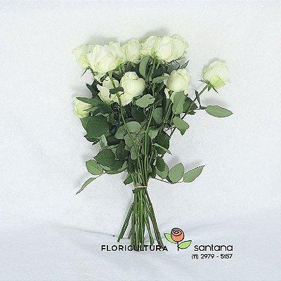 Rosas Brancas Atacado 20 Hastes