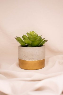 Mini Vaso Decorativo Cimento e Dourado