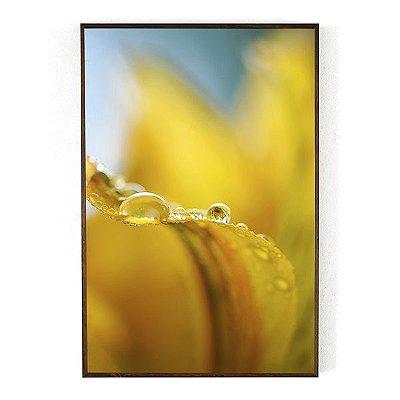 Exuberância com moldura 40 x 60 cm