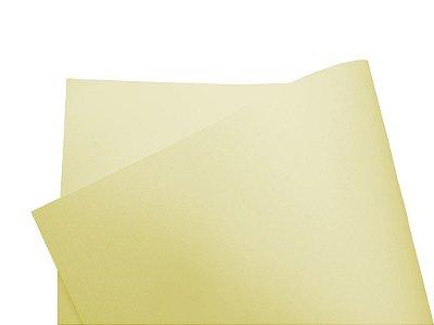 Papel Vergê Plus Berilo A4 com 10 unidades