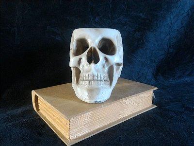 Crânio Caveira Vaso Porta Treco Resina