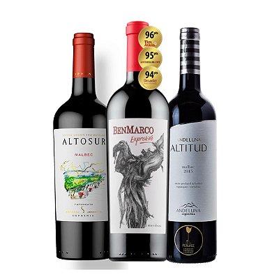 Kit 3 Garrafas - Malbec Altosur, Benmarco Suzana Balbo e Andeluna Altitud Reserva (1 grf de cada)