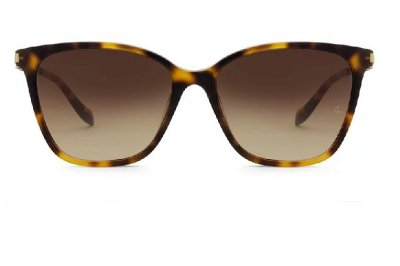 Óculos Solar Feminino Ana Hickmann AH 9276-G21