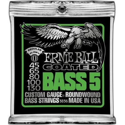 Encordoamento Contrabaixo 5 Cordas Regular Slinky Bass .045 Ernie Ball 3836