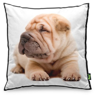 Almofada Love Dogs Black Edition - Shar Pei
