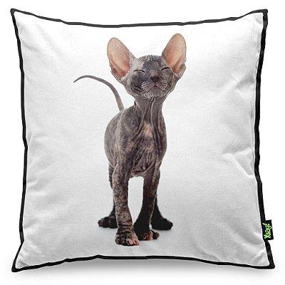 Almofada Love Cats Black Edition - Hairless Sphynx