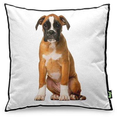 Almofada Love Dogs Black Edition - Boxer
