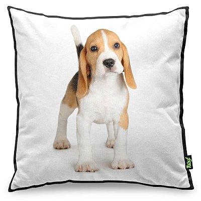 Almofada Love Dogs Black Edition - Beagle