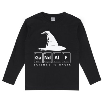 Camiseta Manga Longa Senhor dos Anéis Gandalf