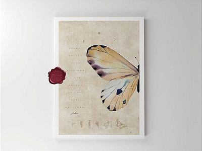 Print - Borboleta - Nascer de Asas