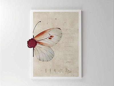 Print - Borboleta não nasce borboleta
