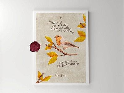 Print - Eu passarinho