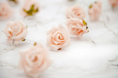 Rosas Salmão - Fairy Light | Luminária | Luz de Fadas