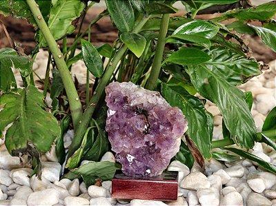 Drusa Ametista com base em madeira 16 cm