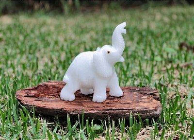 Elefante em pedra Branco
