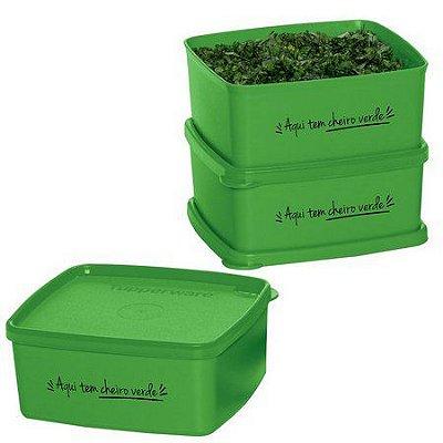 Tupperware Jeitosinho Cheiro verde - Kit 3 peças
